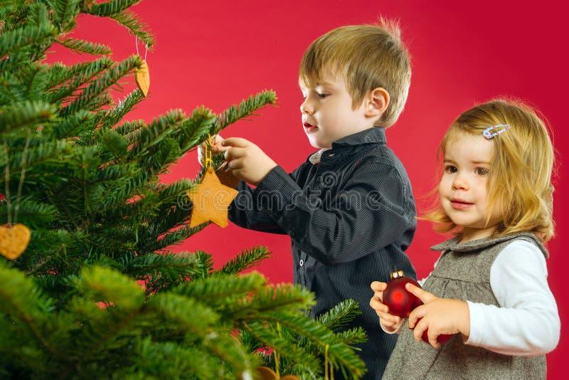 Κρεμώντας διακοσμήσεις χριστουγεννιάτικων δέντρων αδελφών και αδελφών στοκ φωτογραφία με δικαίωμα ελεύθερης χρήσης