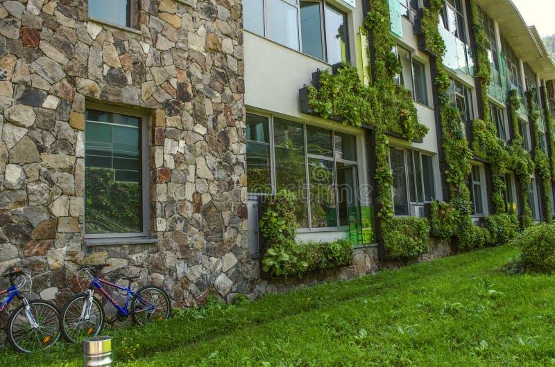 Κρεμώντας κήποι της αναρρίχησης των εγκαταστάσεων στις προσόψεις των εκπαιδευτικών κτηρίων του διεθνούς κολλεγίου, σε Dilijan στοκ εικόνες