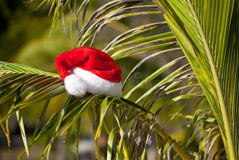 κρεμώντας κόκκινο s καπέλω& στοκ φωτογραφίες με δικαίωμα ελεύθερης χρήσης