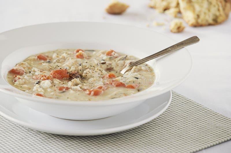 Κρεμώδης σούπα άγριου ρυζιού κοτόπουλου στοκ εικόνες με δικαίωμα ελεύθερης χρήσης