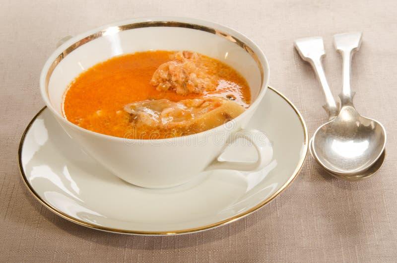 Κρεμώδης σούπα κυπρίνων με την ξινή κρέμα στοκ εικόνες