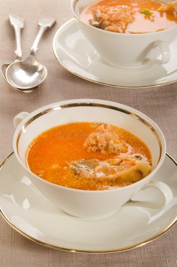Κρεμώδης σούπα κυπρίνων με την ξινή κρέμα στοκ εικόνα