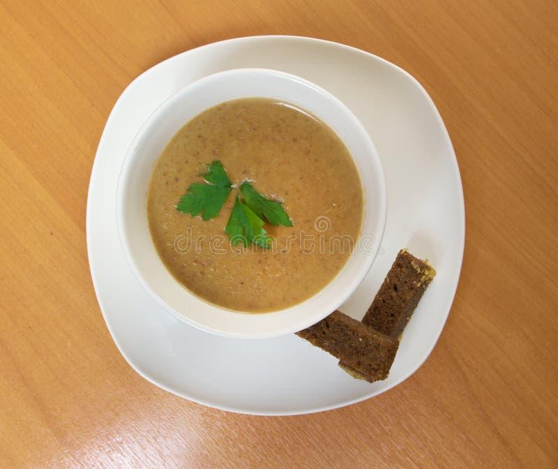 Κρεμώδης σούπα musroom στοκ φωτογραφία