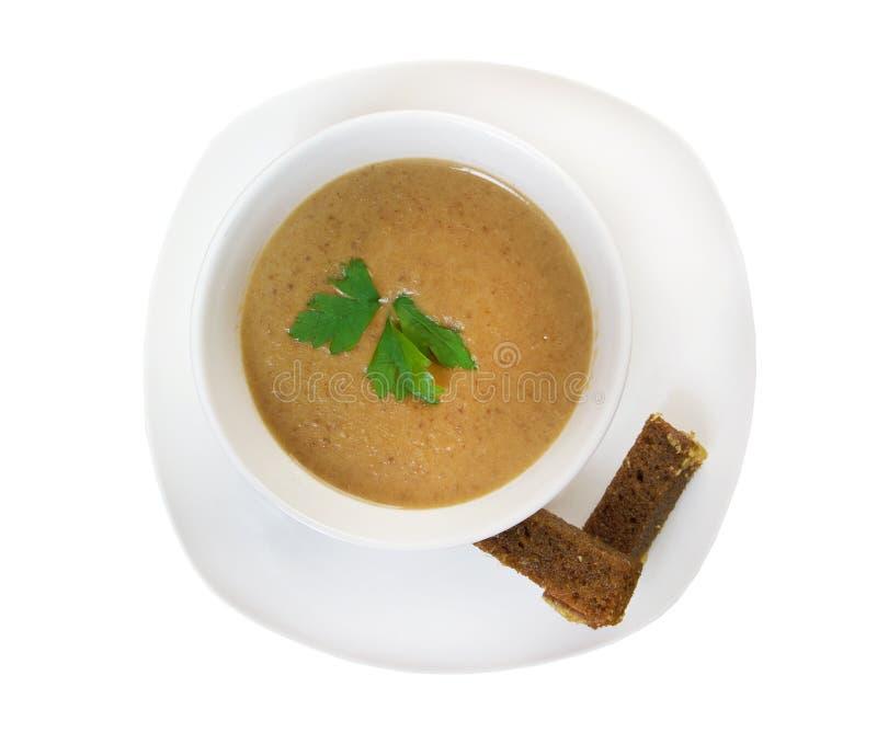 Κρεμώδης σούπα musroom στοκ εικόνες