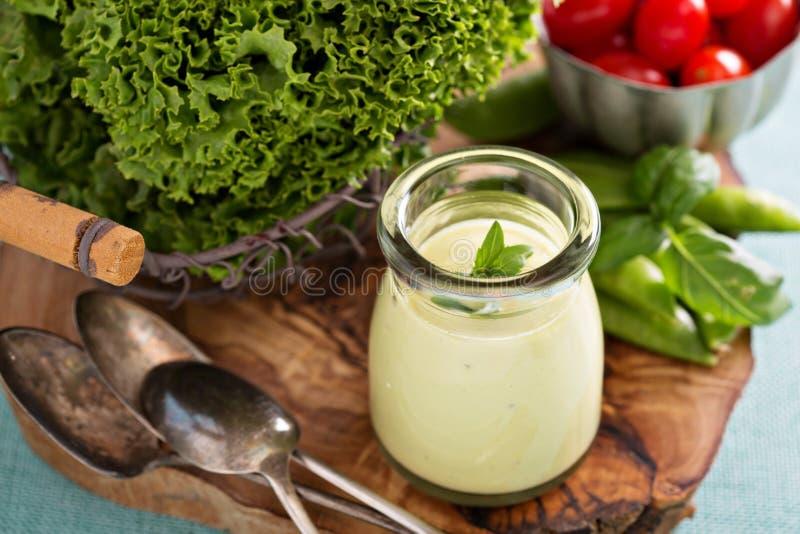Κρεμώδης vegan σάλτσα αβοκάντο στοκ εικόνα με δικαίωμα ελεύθερης χρήσης