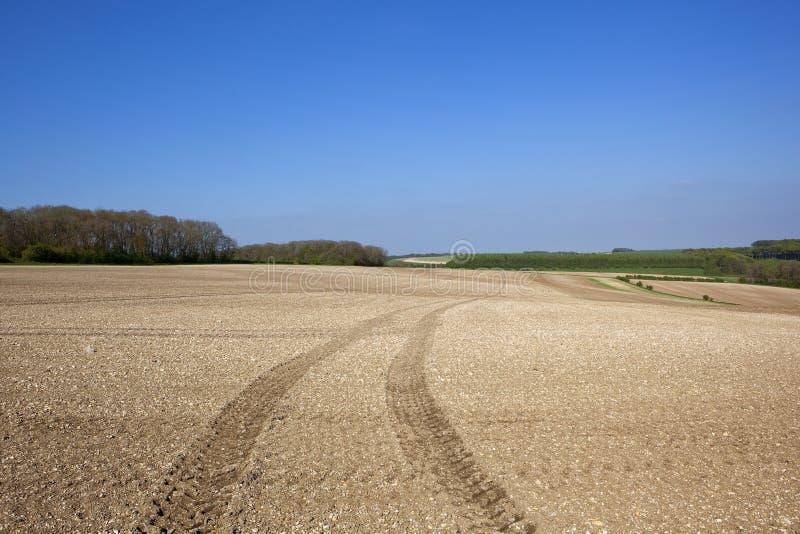 Κρητιδικός καλλιεργημένος τομέας με τις διαδρομές ελαστικών αυτοκινήτου σε ένα τοπίο άνοιξης στοκ φωτογραφία με δικαίωμα ελεύθερης χρήσης