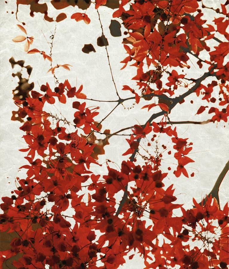 κρητιδικό κόκκινο τυπωμέν&ome στοκ φωτογραφία με δικαίωμα ελεύθερης χρήσης