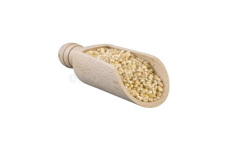 κριθάρι μαργαριταριών στην ξύλινη σέσουλα που απομονώνεται στο άσπρο υπόβαθρο διατροφή βιο φυσικό συστατικό τροφίμων r στοκ φωτογραφία με δικαίωμα ελεύθερης χρήσης