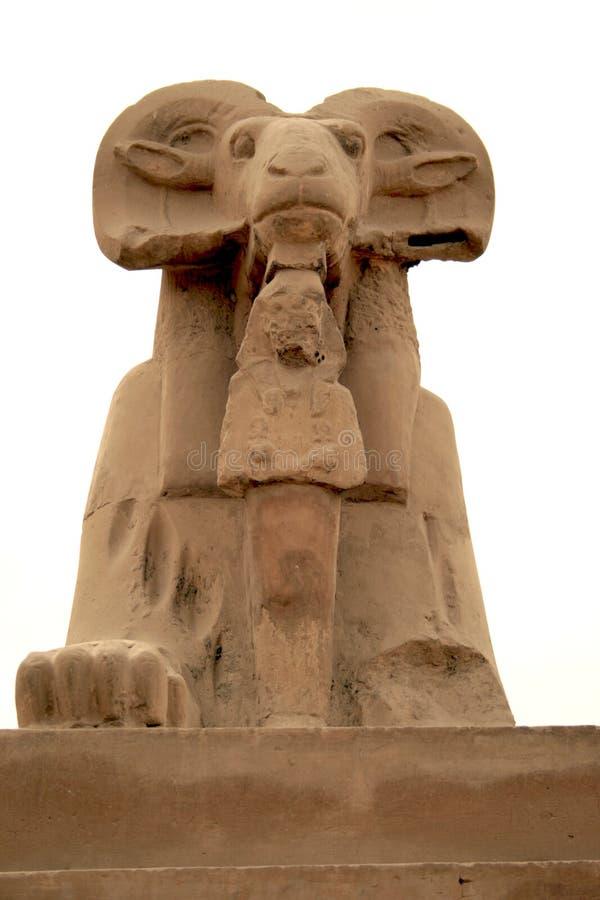 κριός sphinx στοκ φωτογραφία