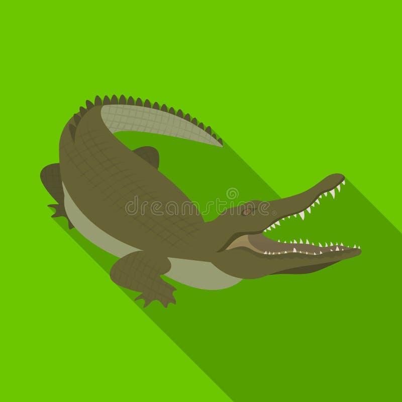 Κροκόδειλος, επικίνδυνο αρπακτικό ζώο Ερπετό, ενιαίο εικονίδιο κροκοδείλων του Νείλου στον επίπεδο Ιστό απεικόνισης αποθεμάτων συ ελεύθερη απεικόνιση δικαιώματος