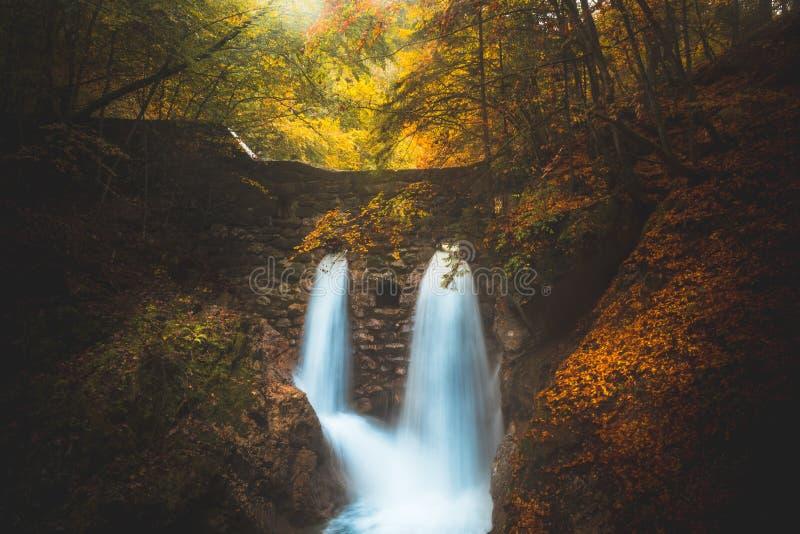 Κρυμμένος καταρράκτης σε ένα απόκρυφο δάσος στοκ εικόνες