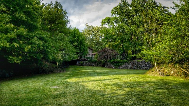 Κρυμμένο σπίτι από τα δέντρα στοκ εικόνα
