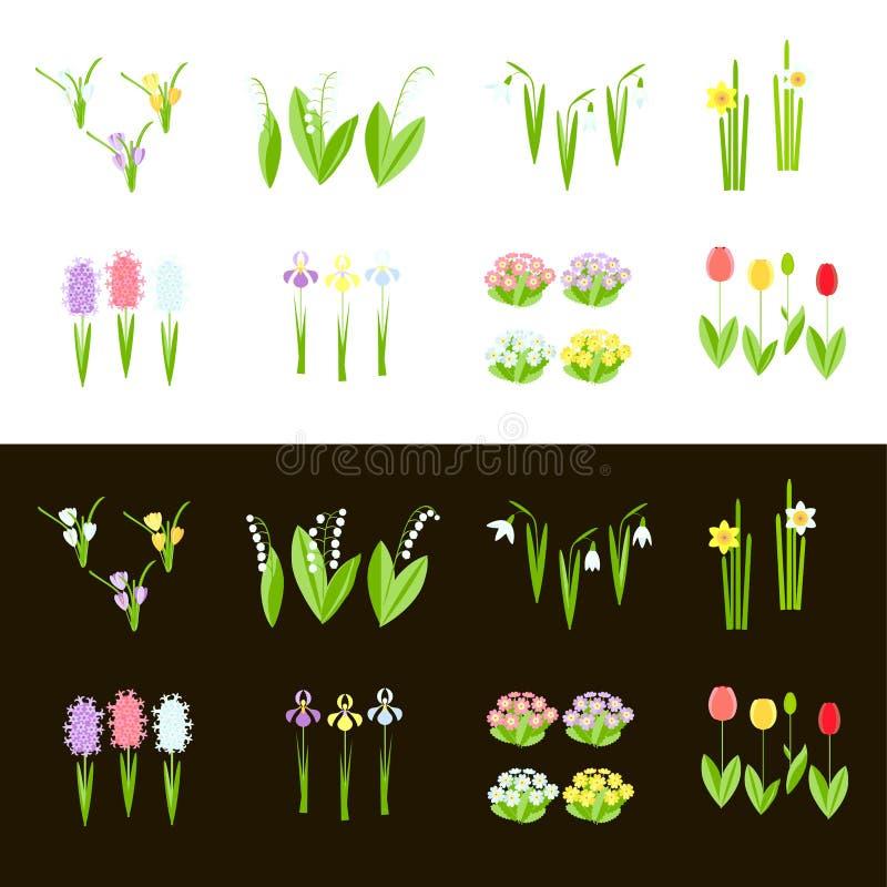 Κρόκος, snowdrop, κρίνος της κοιλάδας, κρόκος, υάκινθος, primrose, daffodil, απεικόνιση αποθεμάτων