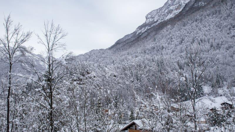 κρύος και κρύος χειμώνας στοκ εικόνες με δικαίωμα ελεύθερης χρήσης