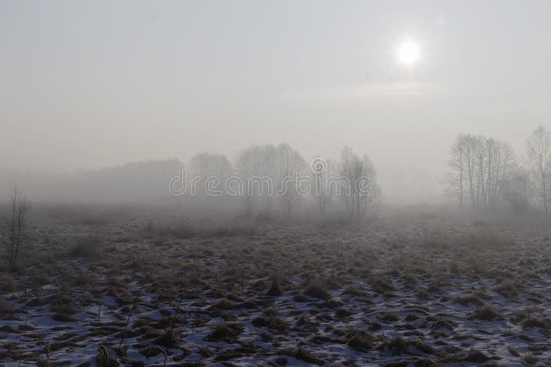 κρύος χειμώνας πρωινού στοκ φωτογραφίες με δικαίωμα ελεύθερης χρήσης