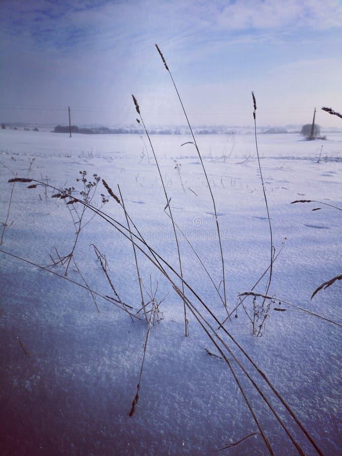 κρύος χειμώνας τοπίων στοκ εικόνα με δικαίωμα ελεύθερης χρήσης