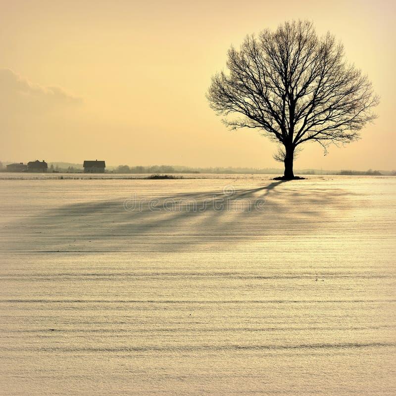 Κρύο και ζωηρόχρωμο χειμερινό βράδυ στη Λιθουανία στοκ φωτογραφία
