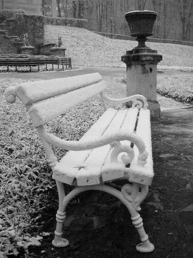 Download κρύο πάρκο ημέρας στοκ εικόνες. εικόνα από σλοβενία, άσπρος - 22787066