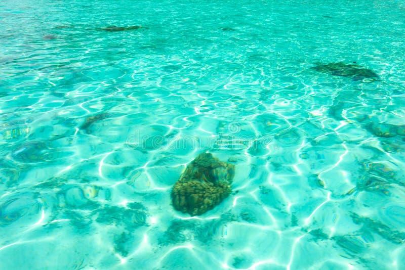 Κρύσταλλο - σαφής σύσταση θαλάσσιου νερού μπλε φυσικός ανασκόπησης turquo στοκ φωτογραφία