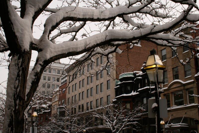 Κτήρια της Βοστώνης στο χιόνι στοκ εικόνα