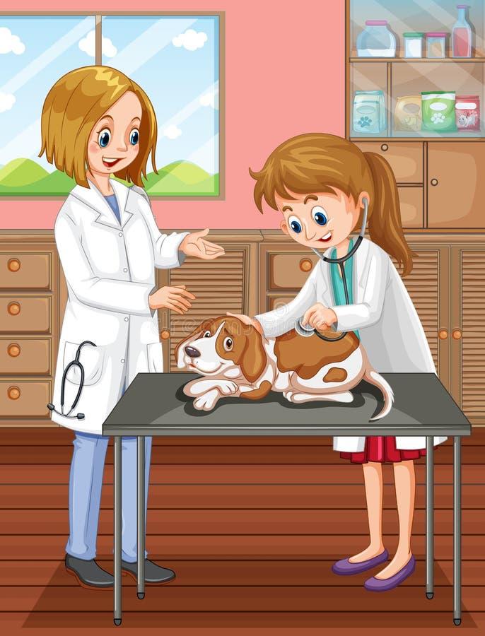Κτηνίατρος και σκυλί στην κλινική διανυσματική απεικόνιση