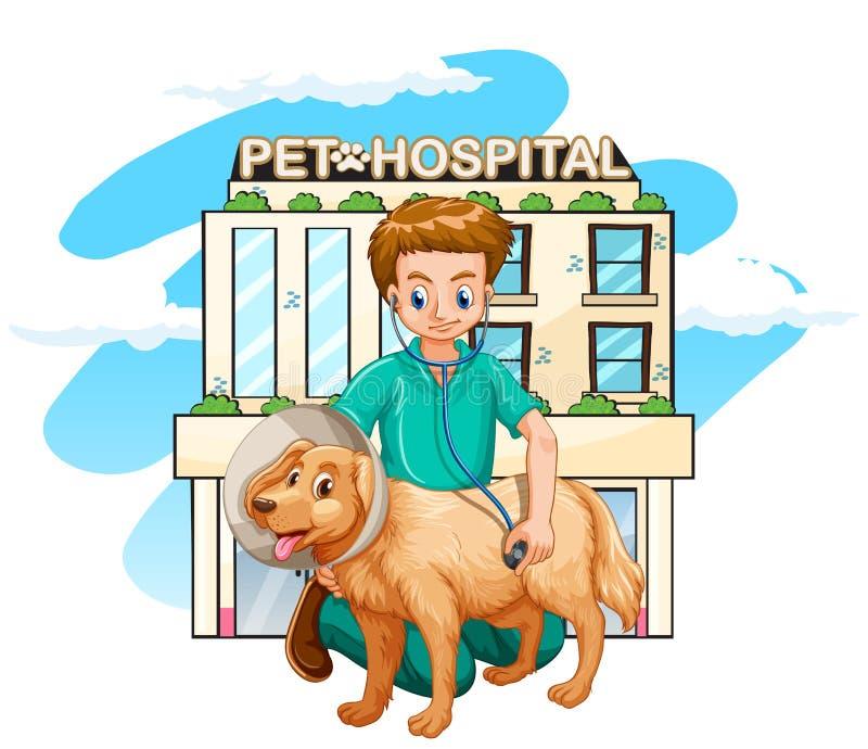 Κτηνίατρος που δίνει την επεξεργασία στο σκυλί απεικόνιση αποθεμάτων