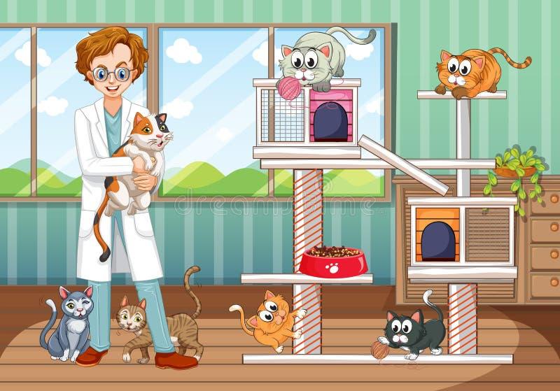 Κτηνίατρος που εργάζεται στο ζωικό νοσοκομείο με πολλές γάτες διανυσματική απεικόνιση