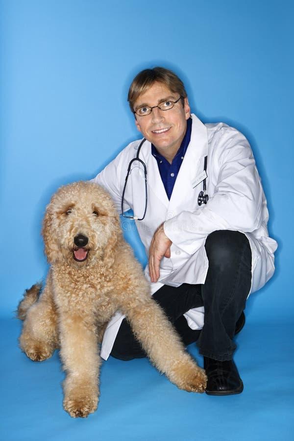 κτηνίατρος σκυλιών στοκ φωτογραφίες με δικαίωμα ελεύθερης χρήσης