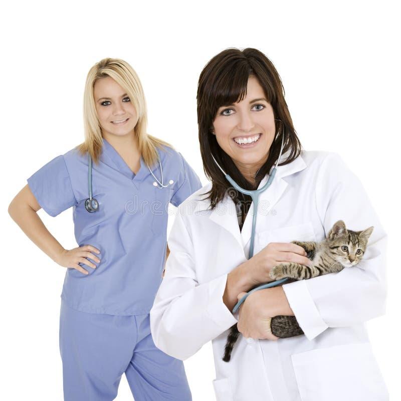 κτηνίατρος στοκ φωτογραφία