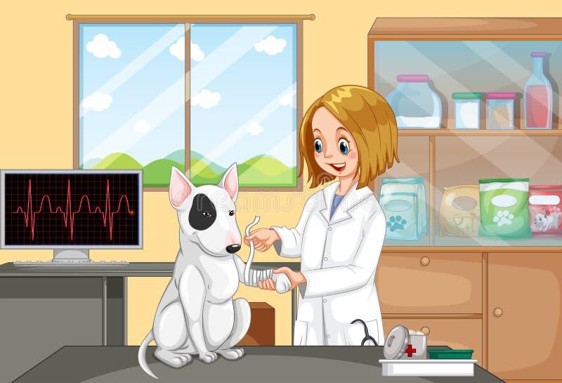 Κτηνιατρικός γιατρός που βοηθά ένα σκυλί ελεύθερη απεικόνιση δικαιώματος