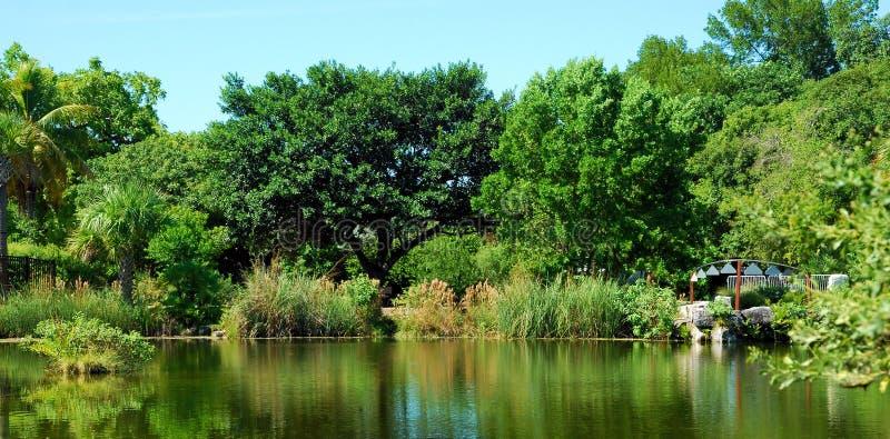 Κτύποι από τη λίμνη στοκ φωτογραφία με δικαίωμα ελεύθερης χρήσης