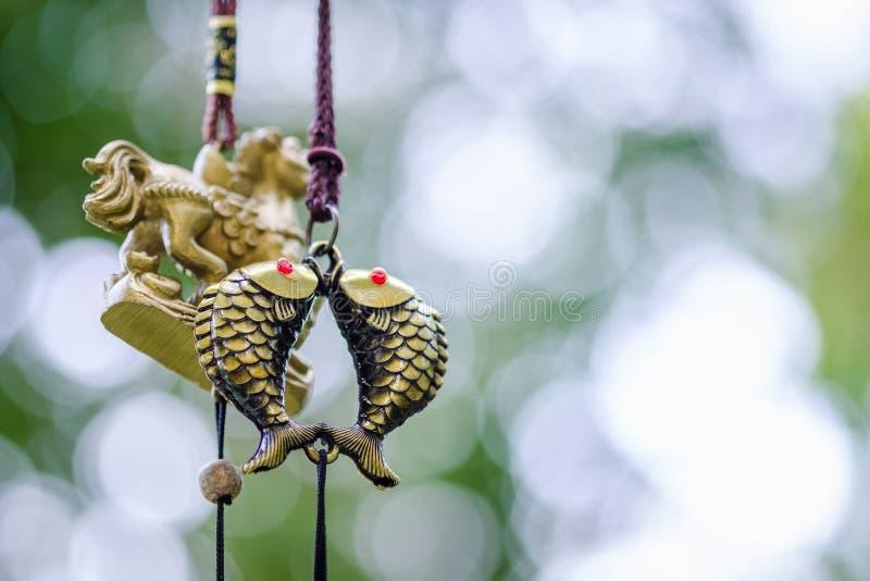 Κτύποι ψαριών ζεύγους της Shui Feng στοκ εικόνες