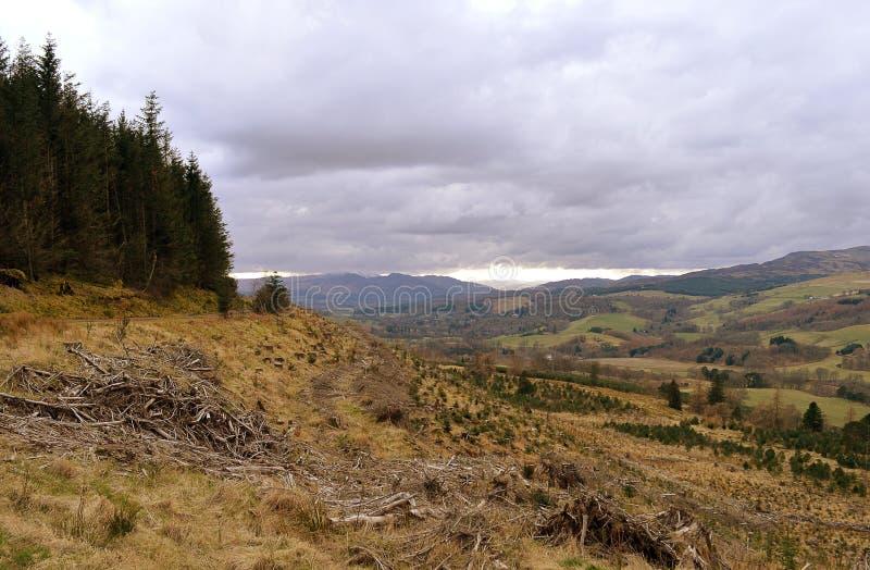 Κτύπος Crieff, Perthshire, Σκωτία στοκ εικόνες με δικαίωμα ελεύθερης χρήσης