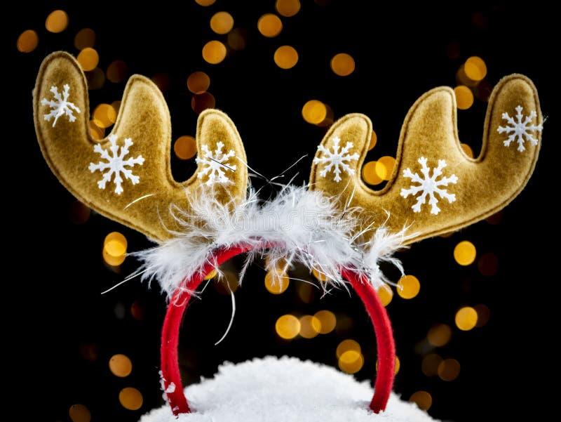 Κυκλίσκος ελαφόκερων ταράνδων στο χιόνι στοκ εικόνες