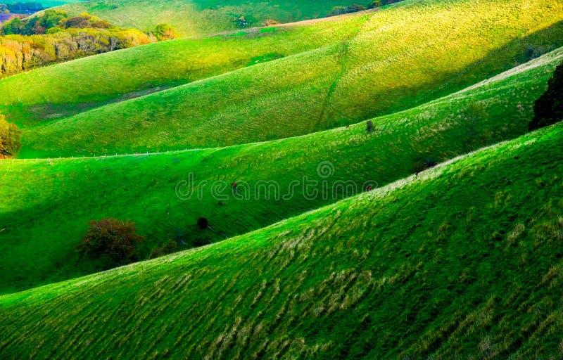 Κυλώντας βουνοπλαγιά του Σάσσεξ, που διπλώνει τους λόφους στοκ φωτογραφίες