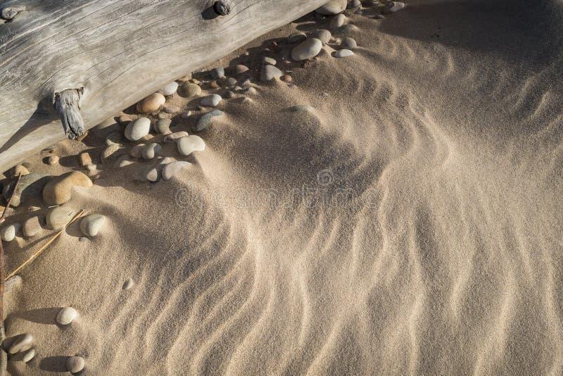 Κυματισμοί άμμου και driftwood στην παραλία Culbin στη Σκωτία στοκ εικόνες