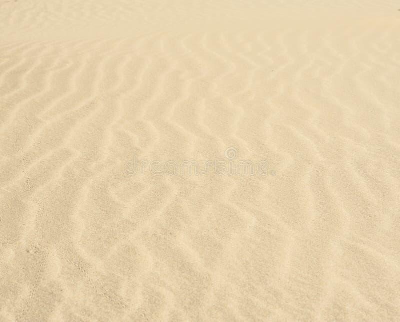 Κυματισμοί άμμου σε μια έρημο στοκ φωτογραφίες με δικαίωμα ελεύθερης χρήσης