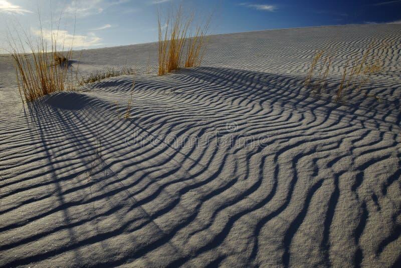 Κυματισμοί άμμου στην έρημο ΗΠΑ στοκ φωτογραφία