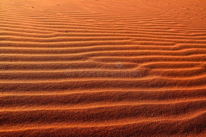 Κυματισμοί άμμου στην έρημο στοκ εικόνες