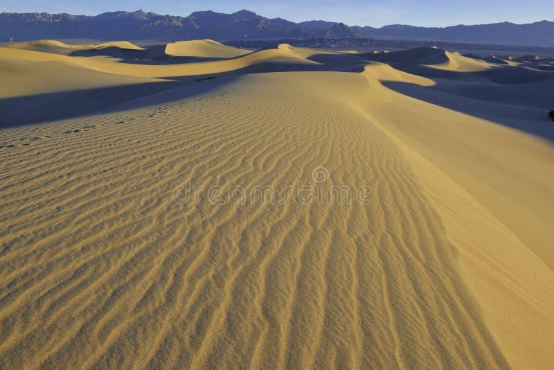 Κυματισμοί και σκιές στους αμμόλοφους άμμου, κοιλάδα θανάτου, εθνικό πάρκο στοκ φωτογραφία