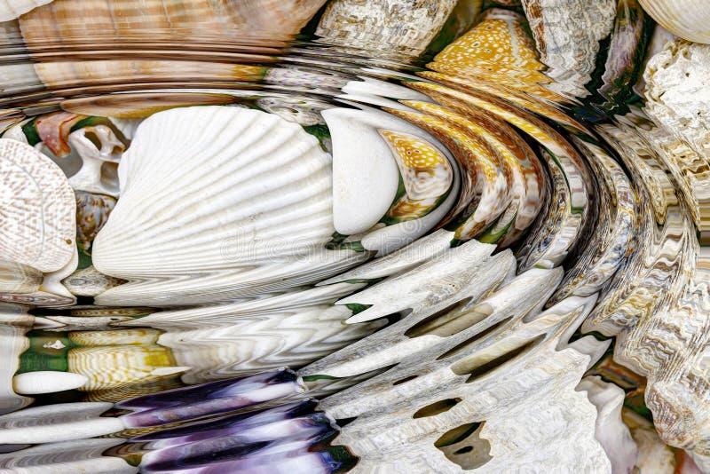 Κυματισμοί νερού επάνω από τα κοχύλια θάλασσας στοκ εικόνες