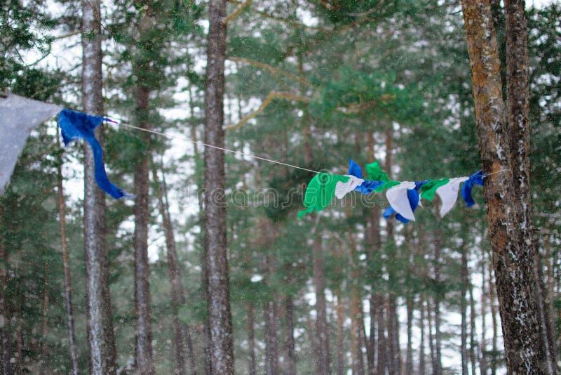 Κυματισμοί σημαιών στο δάσος στοκ εικόνα με δικαίωμα ελεύθερης χρήσης