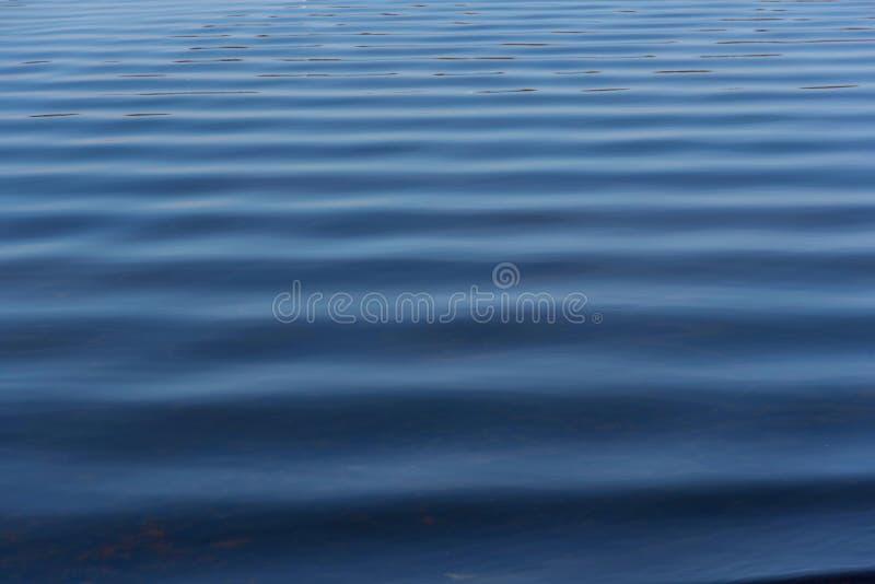 Κυματισμοί στην επιφάνεια νερού στοκ εικόνα με δικαίωμα ελεύθερης χρήσης