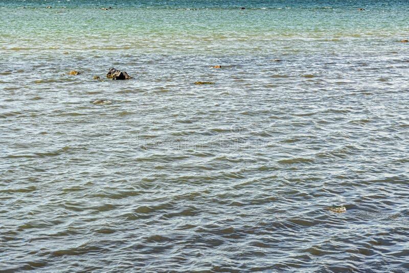 Κυματισμοί στην επιφάνεια του νερού στοκ φωτογραφίες με δικαίωμα ελεύθερης χρήσης