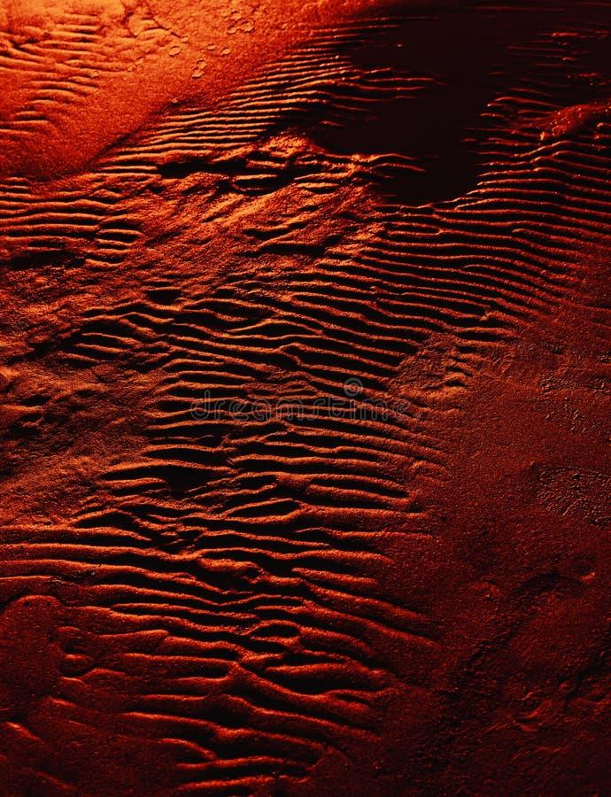 Κυματισμοί στην υγρή σύσταση υποβάθρου άμμου στοκ εικόνα