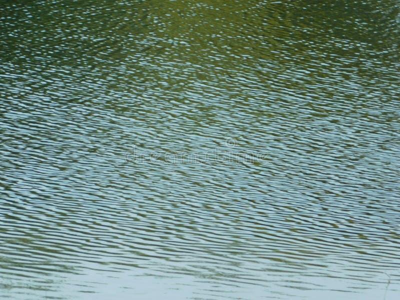 Κυματισμοί στη λίμνη κάτω από τον ήλιο στοκ φωτογραφίες με δικαίωμα ελεύθερης χρήσης