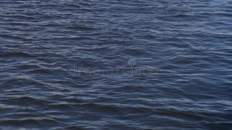 Κυματισμοί στη λίμνη κυματισμός του νερού στη λίμνη Φύση και νερό στοκ εικόνες με δικαίωμα ελεύθερης χρήσης