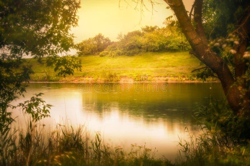 Κυματισμοί στον ποταμό στην ηλιόλουστη θερινή ημέρα στοκ φωτογραφίες με δικαίωμα ελεύθερης χρήσης