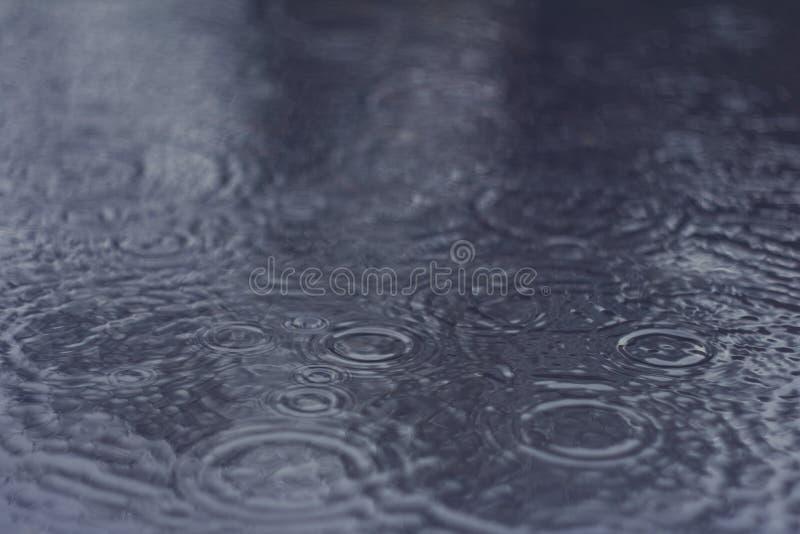 Κυματισμοί στο νερό κατά τη διάρκεια μιας βροχής στοκ εικόνα με δικαίωμα ελεύθερης χρήσης