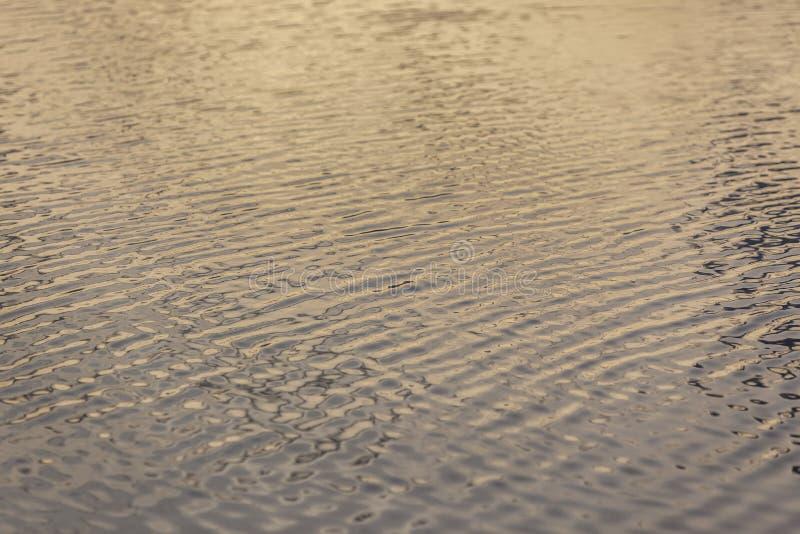Κυματισμοί στο νερό στην ανατολή στοκ εικόνες με δικαίωμα ελεύθερης χρήσης